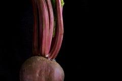 Rode biet en stammen Royalty-vrije Stock Foto