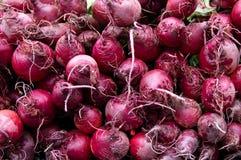 Rode bieten op vertoning bij de markt van de landbouwer Stock Afbeeldingen