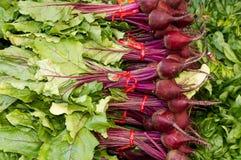 Rode bieten op vertoning bij de markt van de landbouwer Royalty-vrije Stock Fotografie