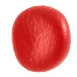 Rode bloedcel Royalty-vrije Stock Fotografie