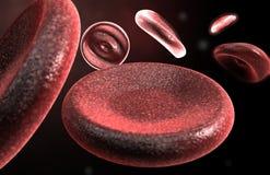 Rode bloedcellen Stock Foto