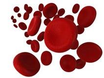 Rode bloedcellen Stock Afbeelding