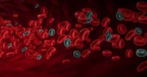 Rode bloedcellen in een slagader met zieke kankercellen, stroom binnen lichaam royalty-vrije illustratie