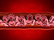 Rode bloedcellen met wain royalty-vrije stock afbeeldingen