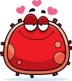 Rode bloedcelliefde Stock Foto