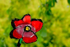 Rode bloem op groene achtergrond Stock Fotografie
