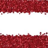Rode bloemblaadjes op een witte achtergrond. Royalty-vrije Stock Afbeelding