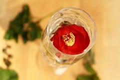 Rode bloemdecoratie Royalty-vrije Stock Foto