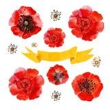 Rode bloemen vector illustratie