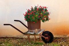 Rode bloemen in een roestige kruiwagen royalty-vrije stock afbeeldingen