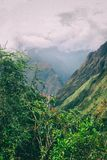 Rode bloemen en de Andes Royalty-vrije Stock Afbeeldingen