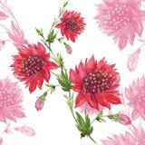 Rode bloemen Naadloos patroon Abstracte waterverfachtergrond - decoratieve samenstelling U stock illustratie