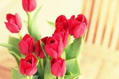 Rode bloemen op een terraslijst Royalty-vrije Stock Afbeeldingen