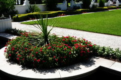 Rode bloemen in park Stock Foto's