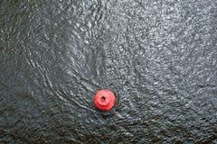 Rode boei op de waterspiegel Stock Fotografie