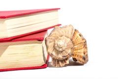 Rode boeken en shell Stock Fotografie