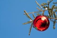 Rode bol in een Kerstboom tegen blauwe hemel Royalty-vrije Stock Afbeelding