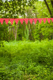 Rode bunting vlaggen Royalty-vrije Stock Fotografie