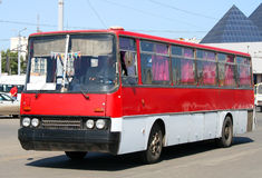 Rode bus Stock Foto