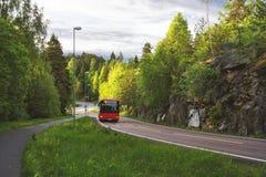 Rode bus in de weg van Noorwegen en groen bos Royalty-vrije Stock Foto