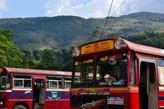 Rode bussen op de post royalty-vrije stock afbeeldingen