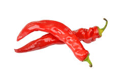 Rode cayennepeper Spaanse peperpeper stock afbeeldingen