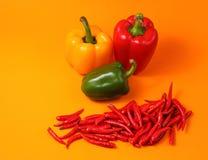 Rode chillis en paprika Stock Fotografie