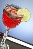 Rode cocktaildrank Royalty-vrije Stock Foto's