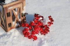 Rode crabapples in sneeuw royalty-vrije stock afbeelding
