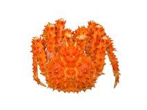 Rode de koningskrab van Alaska Stock Afbeelding