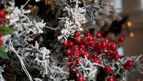 Rode decoratieve bessen die op een snow-covered Kerstboom hangen stock footage