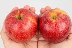 Rode die appelen in handen worden gehouden stock afbeelding