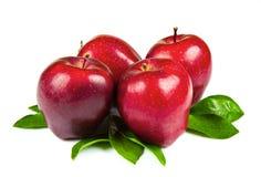 rode die appelen met bladeren op witte achtergrond worden geïsoleerd Stock Fotografie