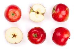 Rode die appelen met plakken op witte hoogste mening worden geïsoleerd als achtergrond Reeks of inzameling Vlak leg patroon Stock Afbeelding