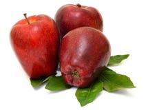 Rode die appelen op witte achtergrond worden geïsoleerd Stock Fotografie