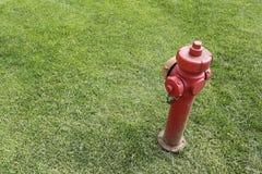 Rode die brandkraan in een gras wordt geïsoleerd Royalty-vrije Stock Afbeelding