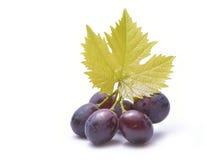 Rode die druiven met bladeren op wit worden geïsoleerd Royalty-vrije Stock Foto's
