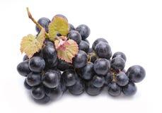 Rode die druiven met bladeren op witte achtergrond worden geïsoleerd Stock Afbeelding