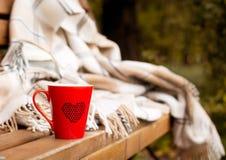 Rode die mok in een deken op een bank wordt verpakt Stock Afbeeldingen