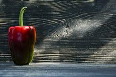 Rode die Paprika op zwarte wordt geïsoleerd stock afbeeldingen