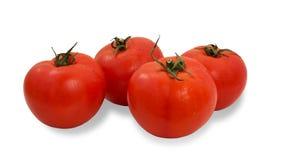 Rode tomaten Stock Foto's