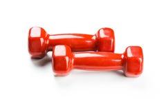 Rode Domoren Stock Afbeelding