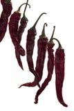 Rode droge hete paprika stock foto's