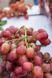 Rode druif Royalty-vrije Stock Foto