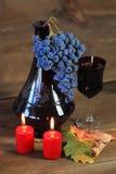Rode druif stock foto's