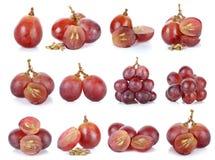 Rode druif die op de witte achtergrond wordt geïsoleerd Stock Foto's