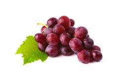 Rode druif met blad dat op witte achtergrond wordt geïsoleerd Stock Foto