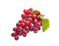 Rode druif met blad dat op witte achtergrond wordt geïsoleerde Stock Fotografie