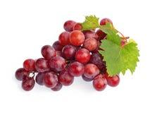 Rode druif met blad dat op witte achtergrond wordt geïsoleerde Royalty-vrije Stock Afbeeldingen