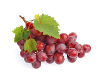 Rode druif met blad dat op witte achtergrond wordt geïsoleerde Stock Afbeelding